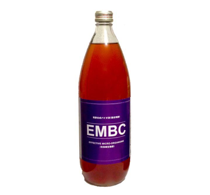embc-2-1