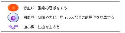 a82dj2013_000366.jpg